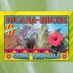 Iguana House